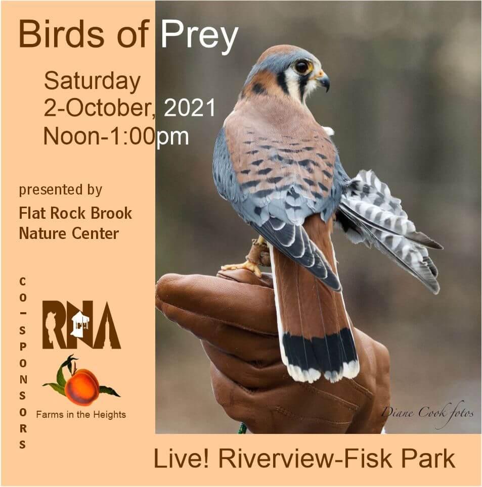 Birds of Prey Event Main Flyer2